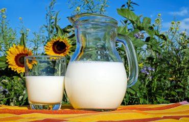 IMO Blog - Categoría nutrición y dietética -Proteínas - Importancia - IMObariátrica